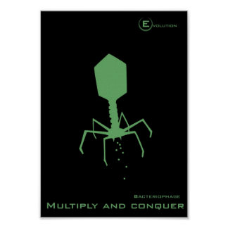 Bacteriophage Posters