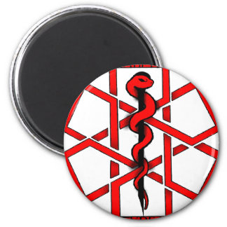 Bad A$$ Diabetic Fridge Magnets