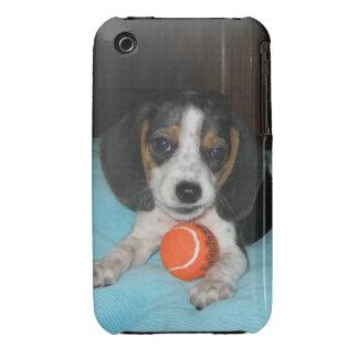 Bad Beagle :) iPhone 3 Covers