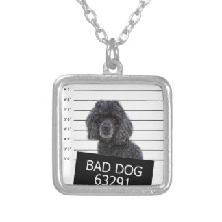 Bad dog silver plated necklace