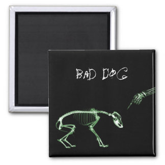 Bad Dog X-ray Skeleton in Green 2 Inch Square Magnet