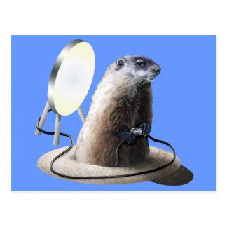 Bad Groundhog Postcard