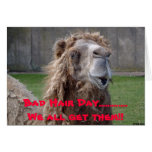 Bad Hair Day, Bad Hair Day.............We all g... Greeting Card