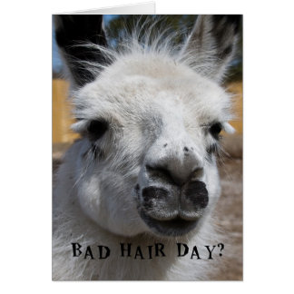 Bad Hair Day Cards