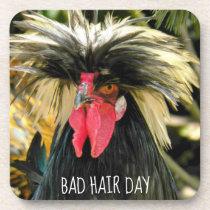 Bad Hair Day Chicken Photo Beverage Coaster