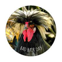Bad Hair Day Chicken Photo Coaster Set