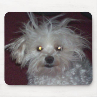 Bad Hair Day - Dog and People Humor Mouse Pad