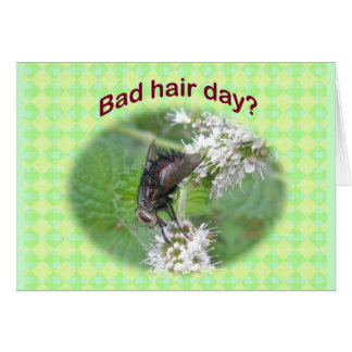 Bad Hair Day Fly Coordinating Items Greeting Card