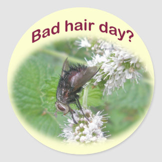 Bad Hair Day Fly Coordinating Items Sticker