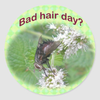 Bad Hair Day Fly Coordinating Items Round Stickers