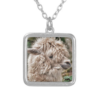 Bad Hair Day Lama Silver Plated Necklace