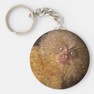 Bad Hair Day Marmoset Basic Round Button Keychain