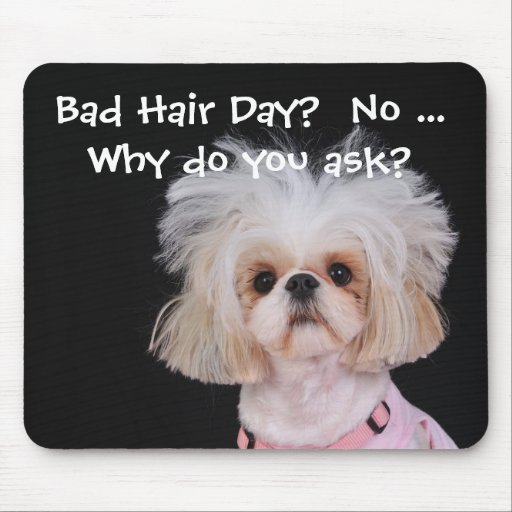 Bad Hair Day? Mousepads