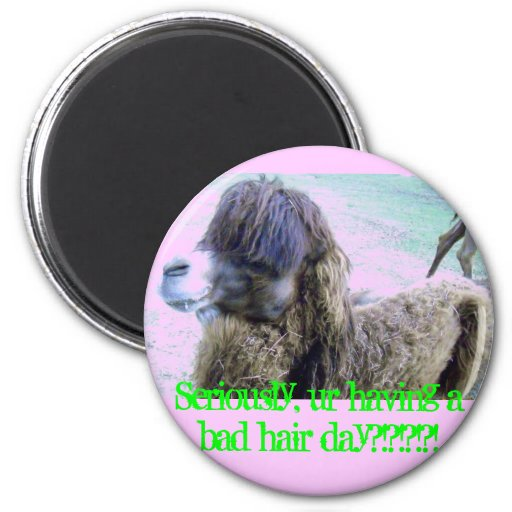 Bad hair day! refrigerator magnet