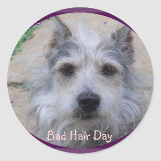 Bad Hair Day Sticker
