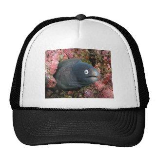 Bad Joke Eel Trucker Hat