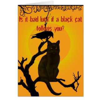 Bad Luck Black Cat Card