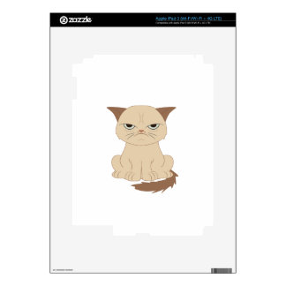 Bad-tempered cat decal for iPad 3