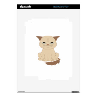 Bad-tempered cat iPad 2 skins