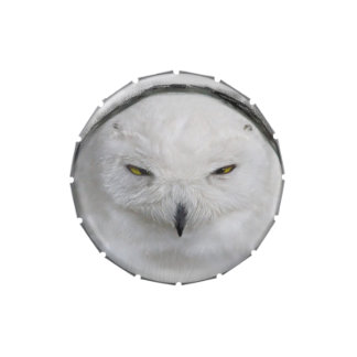 Bad tempered Snowy owl Candy Tin