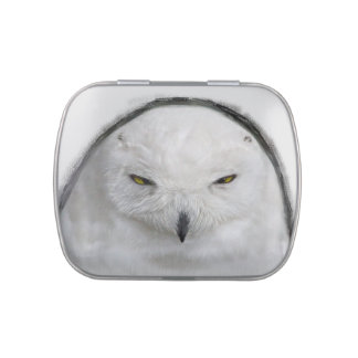 Bad tempered Snowy owl Jelly Belly Tin