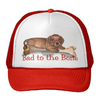 Bad to the Bone - A doxie attitude Hat