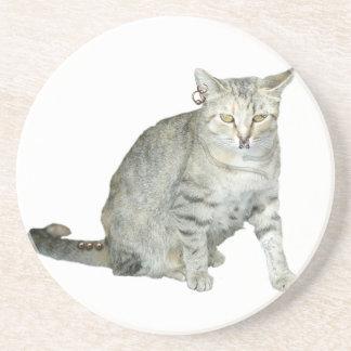 Badass Cat Coasters