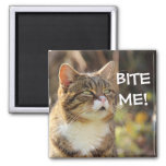 """Badass Cats - """"BITE ME!"""" 2 Inch Square Magnet"""