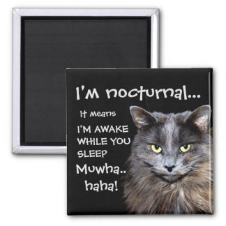 """Badass Cats - """"I'm nocturnal.."""" 2 Inch Square Magnet"""