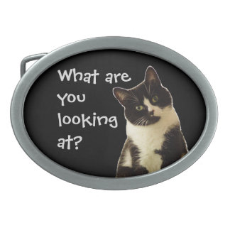 """Badass Cats """"What are you looking at!"""" Belt Buckle"""