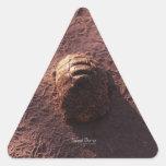 Badén Pegatina Triangular