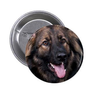 Badge German Shepherd Dog Alsatian cute pet Button