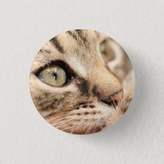 Badge with cat pinback button