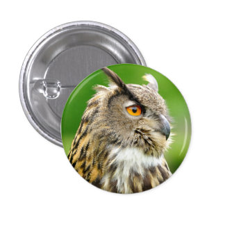 Badge with Owl Pinback Button