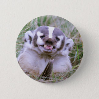 Badger Button