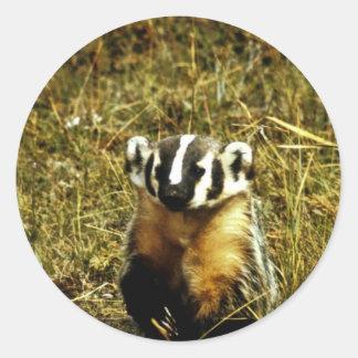 Badger Classic Round Sticker