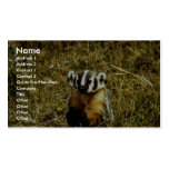 Badger Double-Sided Standard Business Cards (Pack Of 100)