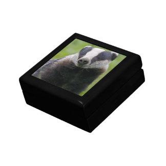 Badger Gift Box
