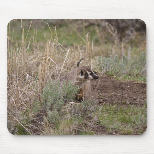 Badger Mouse Pad