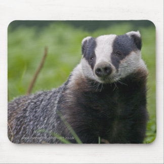 Badger Mousemat Mouse Pad