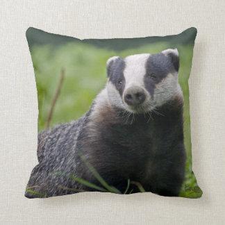Badger Pillow