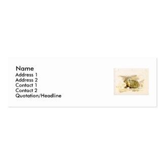 Badger, Profile Card Mini Business Card