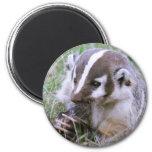 Badger Refrigerator Magnet