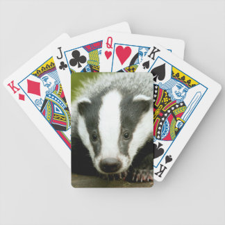 Badger - Stunning pro photo! Bicycle Playing Cards