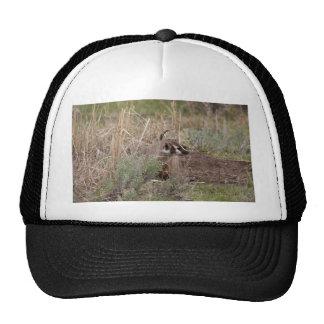 Badger Trucker Hat