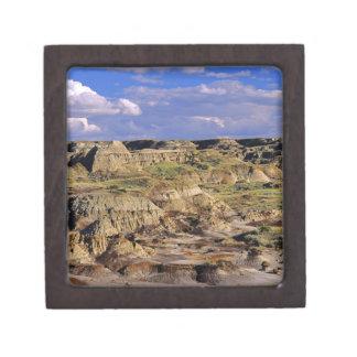 Badlands at Dinosaur Provincial Park in Alberta, 2 Gift Box