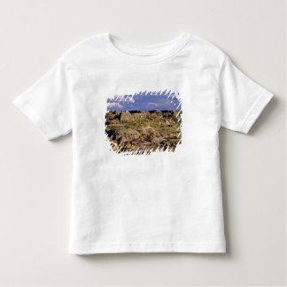 Badlands at Dinosaur Provincial Park in Alberta, 2 Toddler T-shirt