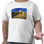 Badlands formations at Dinosaur Provincial Park 2 Tee Shirt