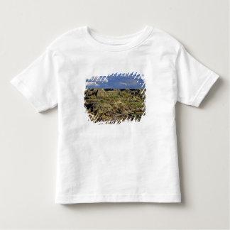 Badlands formations at Dinosaur Provincial Park 4 Toddler T-shirt