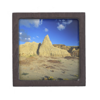 Badlands formations at Dinosaur Provincial Park 7 Jewelry Box